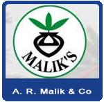 AR Malik